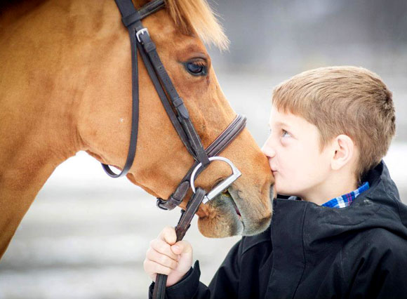 Book your Horseback Riding Lessons or Horse Riding Camps - Stonewood Riding Academy